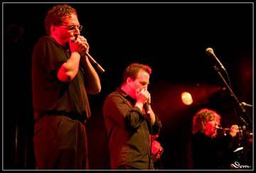 Hazmat Modine. copyright : Dominique Tomasso